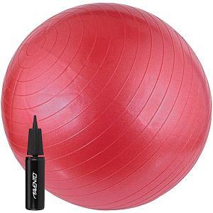 Schreuder Gymnastiek bal incl pomp