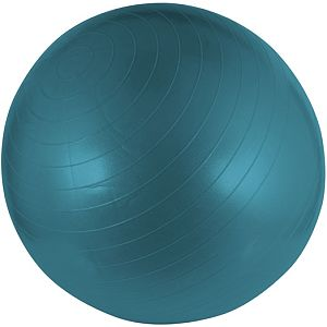 Schr Fitness Gym bal 55 cm